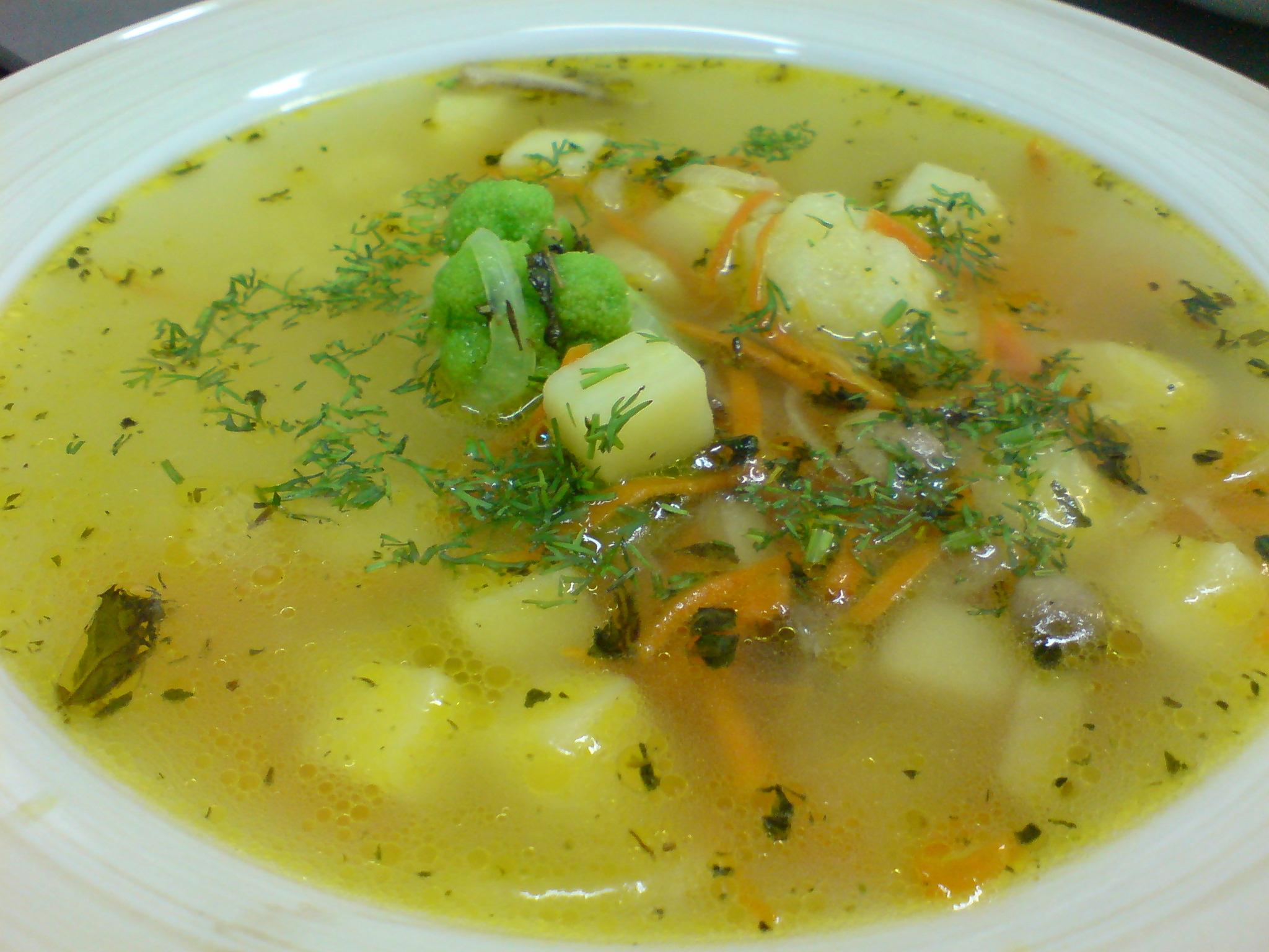 суп на индюшачьем бульоне рецепт с фото